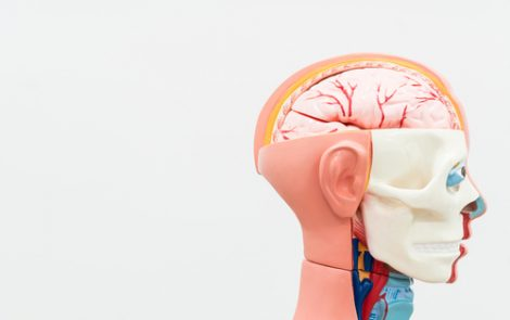 Rare Inflammatory Disorder of Brain Meninges Linked to MPO-positive AAV